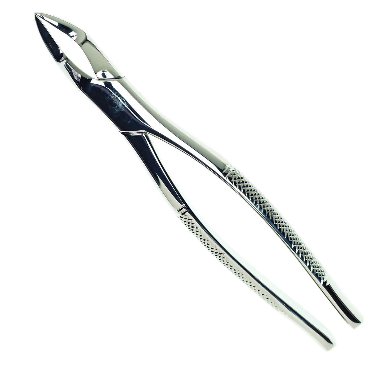 Extraction Forceps USA
